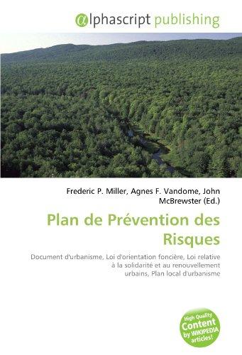 Plan de Prévention des Risques: Document d'urbanisme, Loi d'orientation foncière, Loi relative à la solidarité et au renouvellement urbains, Plan local d'urbanisme