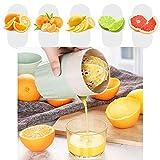 HTYX Tragbare Zitronensaft-Maschine für den Haushalt, multifunktional, Orangensaft-Extraktionswerkzeug, handgeschraubte Fruchtsaftpresse, für den Außenbereich, lebensmittelecht, 101 x 101 x 175 mm