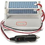 EsportsMJJ Dc 12V 10 G Ozono Generador Ozonizador Placa De Cerámica Esterilizador De Aire