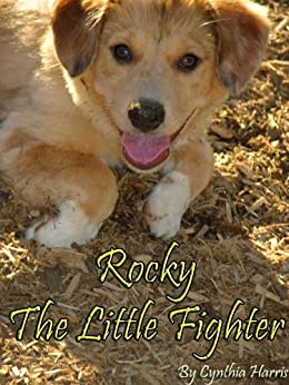 Rocky The Little Fighter by [Harris, Cynthia ]
