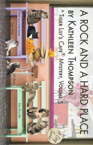 a-rock-and-a-hard-place-a-tiger-lilys-cafe-mystery