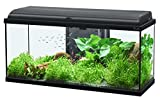 Acuario aquadream 80, LED, Negro, 90 L