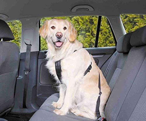 Pettorina per cani Xl 80-110cm, Trixie, Apparecchiature Auto, Auto, Cablaggio, Cani