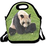 Neoprene Lunch Tote - Panda Wallpaper Waterproof Reusable Cooler Bag For Men Women Adults Kids Toddler Nurses With Adjustable Shoulder Strap - Best Travel Bag