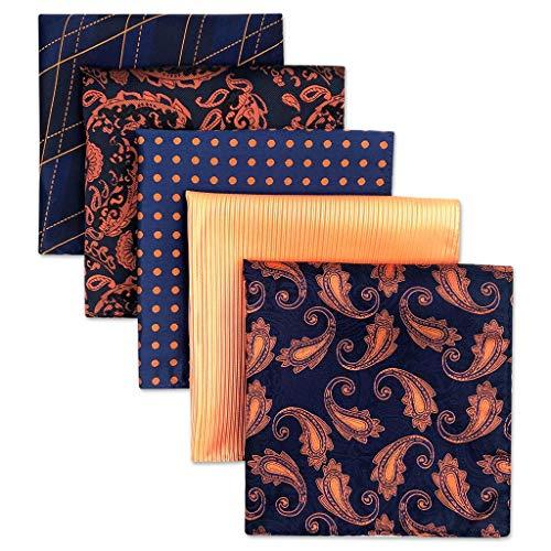Shlax&Wing 5 Pieces Assorted Herren Einstecktücher Handkerchiefs Set Paisley Designer