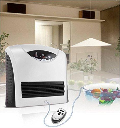 Generador de ozono para aire y agua Ozonizador 400mg/h
