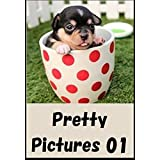 Pretty animal nature Pictures 01 (Japanese Edition)