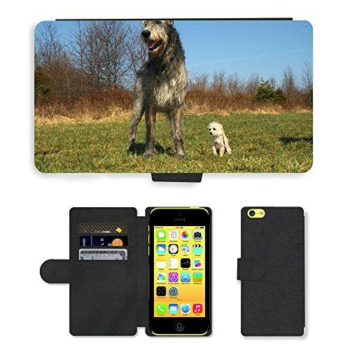 Just Mobile pour Hot Style Téléphone portable étui portefeuille en cuir PU avec fente pour carte//m00140048Irish Wolfhound Chihuahua caniche Mix//Apple iPhone 5C