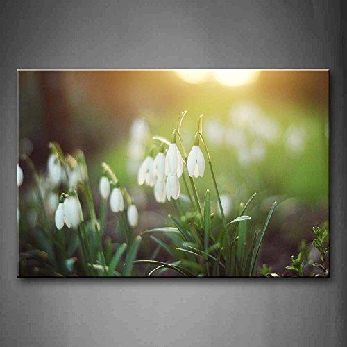 insectos-voladores-en-morado-flor-pared-arte-pintura-fotos-impresion-sobre-lienzo-flores-la-imagen-p
