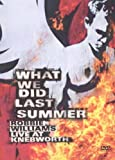 Robbie Williams : What We Did Last Summer, Live at Knebworth - Édition 2 DVD