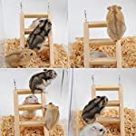 PanDaDa Small Animals Habitat Toy Funny Climbing Ladder Hamster Ladder Stand Wooden Climbing Toy Solid Playing Accessories 15