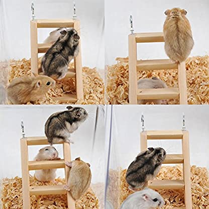 PanDaDa Small Animals Habitat Toy Funny Climbing Ladder Hamster Ladder Stand Wooden Climbing Toy Solid Playing Accessories 7