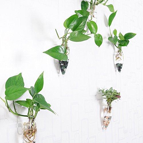 artlass-juego-de-4para-colgar-en-la-pared-florero-de-cristal-planter-terrario-container-maceta-home-