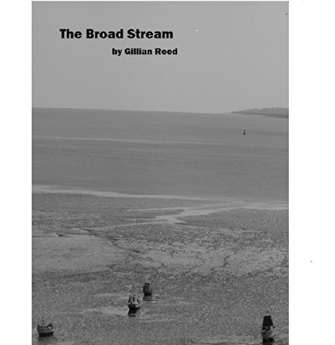 The Broad Stream (The Thin Spectre Mysteries Book 3) (English Edition)