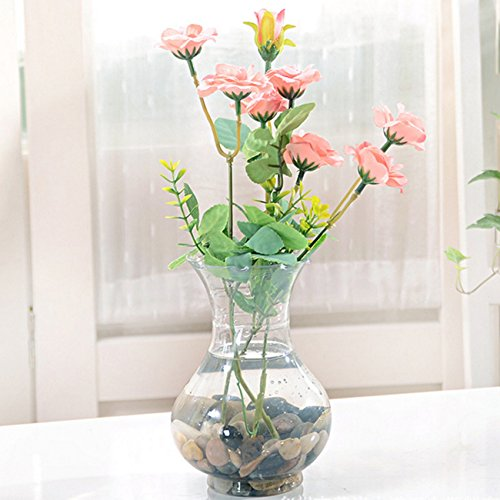 Pygex(TM)Vase For Flower Plant Stand Hanging Hydroponic Home Office Wedding - Hanging Flower Vase