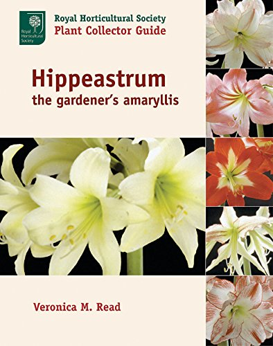 Preisvergleich Produktbild Hippeastrum: The Gardener's Amaryllis (Royal Horticultural Society/Timber Press Plant Collectors Guides Series)