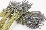 INNA Glas Getrocknetes Lavendel Bündel LELIO, lila-blau, 40 cm - Trocken Blumen Strauß/Trockenes Bouquet - monsterkatz