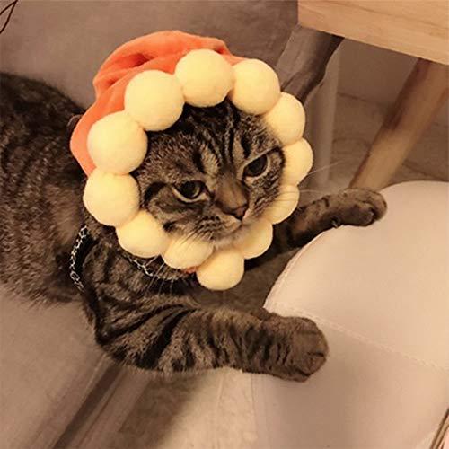 Kostüm Katze Sonnenblumen - Wankd Sonnenblume Hut für Kleine Hunde Katzen Hundehut Halloween Party Kostüm-Zubehör
