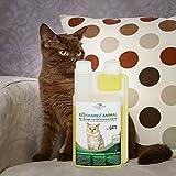 Geruchsneutralisierer Spray für Katzen – natürlicher Katzenurin Entferner – gegen Katzenklo Geruch (500ml Konzentrat ergeben 25 Liter gebrauchsfertigen Katzenurin Geruchsentferner) - 6