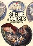 Shells & Corals - Albertus Seba