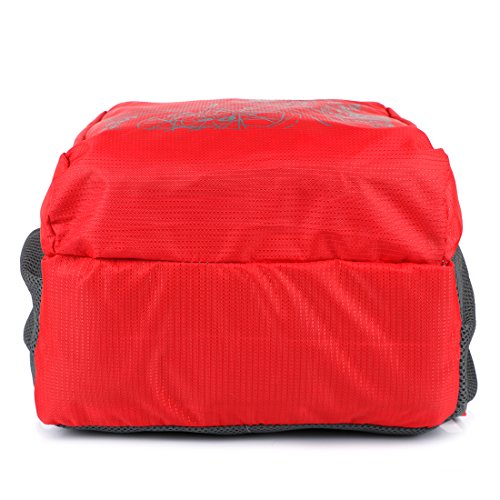 Lutyens Polyester Red Mini Casual Backpack Image 5
