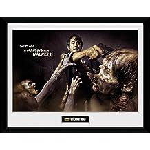 The Walking Dead - Glenn Attack Póster De Colección Enmarcado (40 x 30cm)