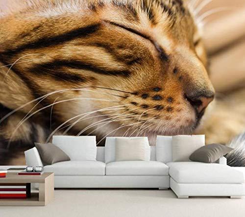 Benutzerdefinierte Tapete für Wände 3D, Katzen Schnauze Schlaf Schnurrhaare Tiere Tapete, Wohnzimmer Sofa Tv Wand Schlafzimmer Papel De Parede, 250 × 175cm