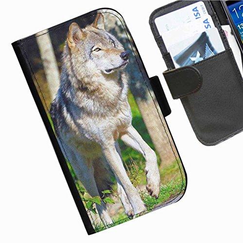 Hairyworm- Hunde Samsung Galaxy Ace 3 (GT-S7270, GT-S7275, GT-S7272) Leder Klapphülle Etui Handy Tasche, Deckel mit Kartenfächern, Geldscheinfach und Magnetverschluss.