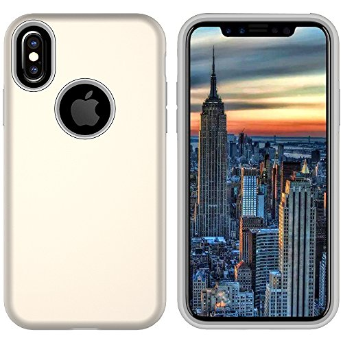 iPhone X Case Review