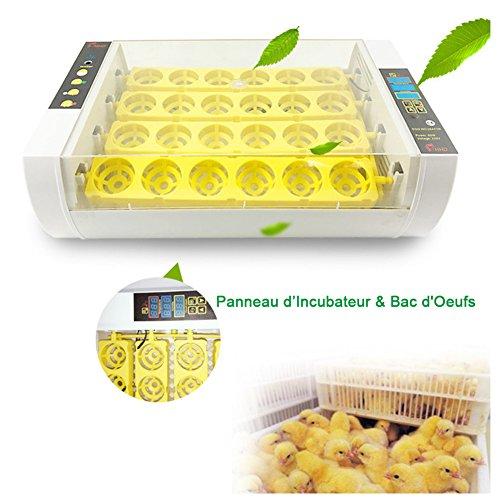 Awhao Incubadora del Huevo Máquina de Eclosión Incubadora Automática de Huevos Claros Digitales de Tamaño Pequeño 24Pcs 220V