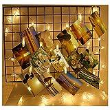 FHzytg LED Foto Clips Lichterketten, 40 Photo Clips 5M Batteriebetriebene Stimmungsbeleuchtung Dekoration für Hängendes Foto Memos Kunstwerke
