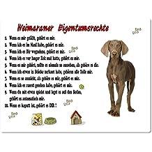 Merchandise for Fans Blechschild/Warnschild/Türschild - Aluminium - 20x30cm Eigentumsrechte Motiv: Weimaraner (01)