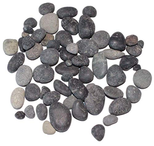 "Dekosteine/Streudeko/Tischdeko\""Beach Pebbles\"" 8-16mm"