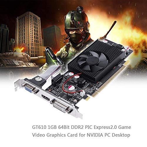 Yaoaomon PNY NVIDIA GeForce VCGGT610 XPB 1 GB DDR3 SDRAM PCI Express 2.0 Grafikkarte schwarz (Nvidia Geforce Gt 1gb Ddr3)