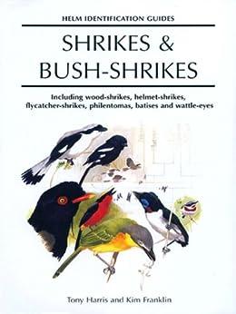 Shrikes and Bush-shrikes: Including Wood-shrikes, Helmet-shrikes, Shrike Flycatchers, Philentomas, Batises and Wattle-eyes par [Harris, Tony]