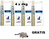 Royal Canin Renal Special ( 4 x 4 kg ) MEGA PACK Katzenfutter + GRATIS, LANGE VARFALLSDATUM