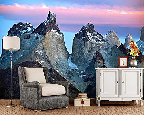 ADDFLOWER Benutzerdefinierte Fototapete Torres Del Paine Berge Patagonien Chile Wandbilder Für Wohnzimmer Schlafzimmer Sofa Hintergrund Wohnkultur @ 400X280Cm_ (157.5_By_110.2_In) _