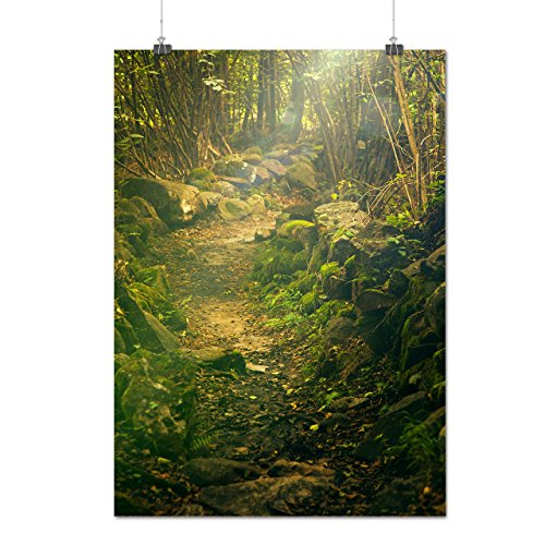green-natural-forest-jungle-tree-matte-glossy-poster-a1-84cm-x-60cm-wellcoda