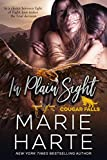 In Plain Sight (Cougar Falls Book 2) (English Edition)