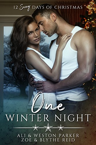 One Winter Night: A Sexy Bad Boy Holiday Novel (The Parker's 12 Days of Christmas)