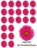 30 fiori rosa gerbera decorazioni commestibili per cupcake, decorazioni per torte di compleanno