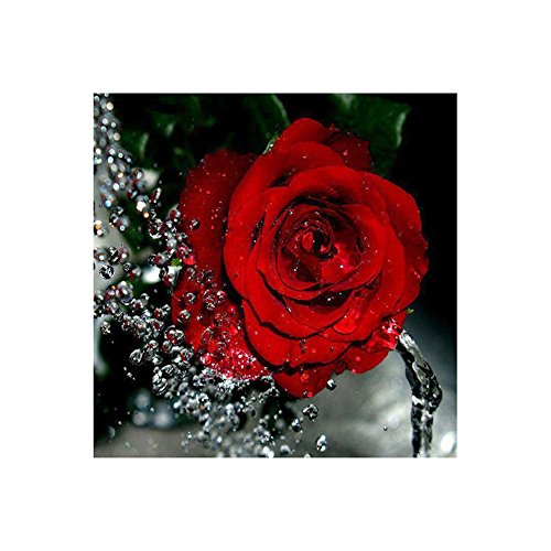 5D DIY Red Rose Pattern Diamond Painting Cube Diamonds Embroidery Landscapes Decoration Cross Stitch Kit