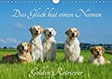 Das Glück hat einen Namen - Golden Retriever (Wandkalender 2016 DIN A4 quer): Eine der wohl schönsten und beliebtesten Hunderassen auf 13 wundervollen ... (Monatskalender, 14 Seiten ) (CALVENDO Tiere)