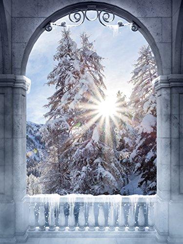 Kate Fotografie Hintergrund Winterwald Schnee Hintergründe Vitange Palace Arch Tür Märchen Fotohintergrund Hochzeit 2x3m