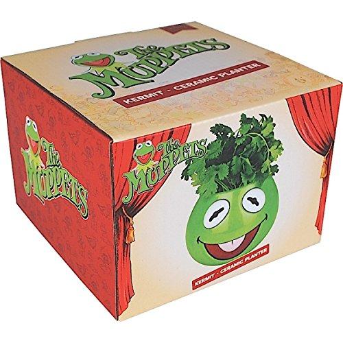 the-muppets-kermit-planter