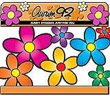 Aurum 92 Autoaufkleber, Motiv bunte Gänseblümchen