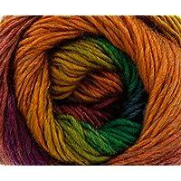 King Cole Riot DK Knitting Wool/Yarn Autumn 1841 per 100g ball