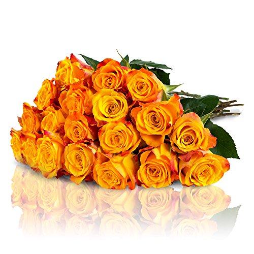 Highlights: • Saisonaler Rosenstrauß mit 15 orange-gelbenen Marie-Claire Rosen• Designed von der MIFLORA Chef-Designerin und Europameisterin der Floristen, Nadine Weckardt, bekannt aus dem TV.• Extrafrische Blumen durch unseren Direkteinkauf beim Gär...