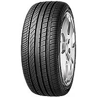Superia Ecoblue 4S XL M+S - 195/65R15 95H - Neumático todas las Estaciones