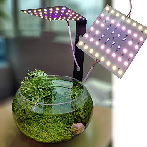 Wasserspiel Micro Landscape Plant Shaped Flower Ständer DIY Fill Light, Vollspektrum/Remote/Einstellbare Helligkeit (12W) -